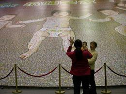 世界上最大的照片拼图面积为660525平方米